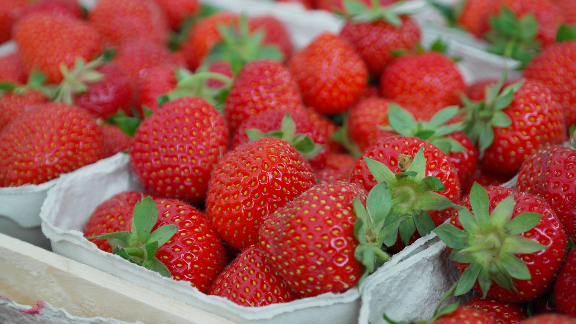 Living Creatively with Fibro | Strawberries