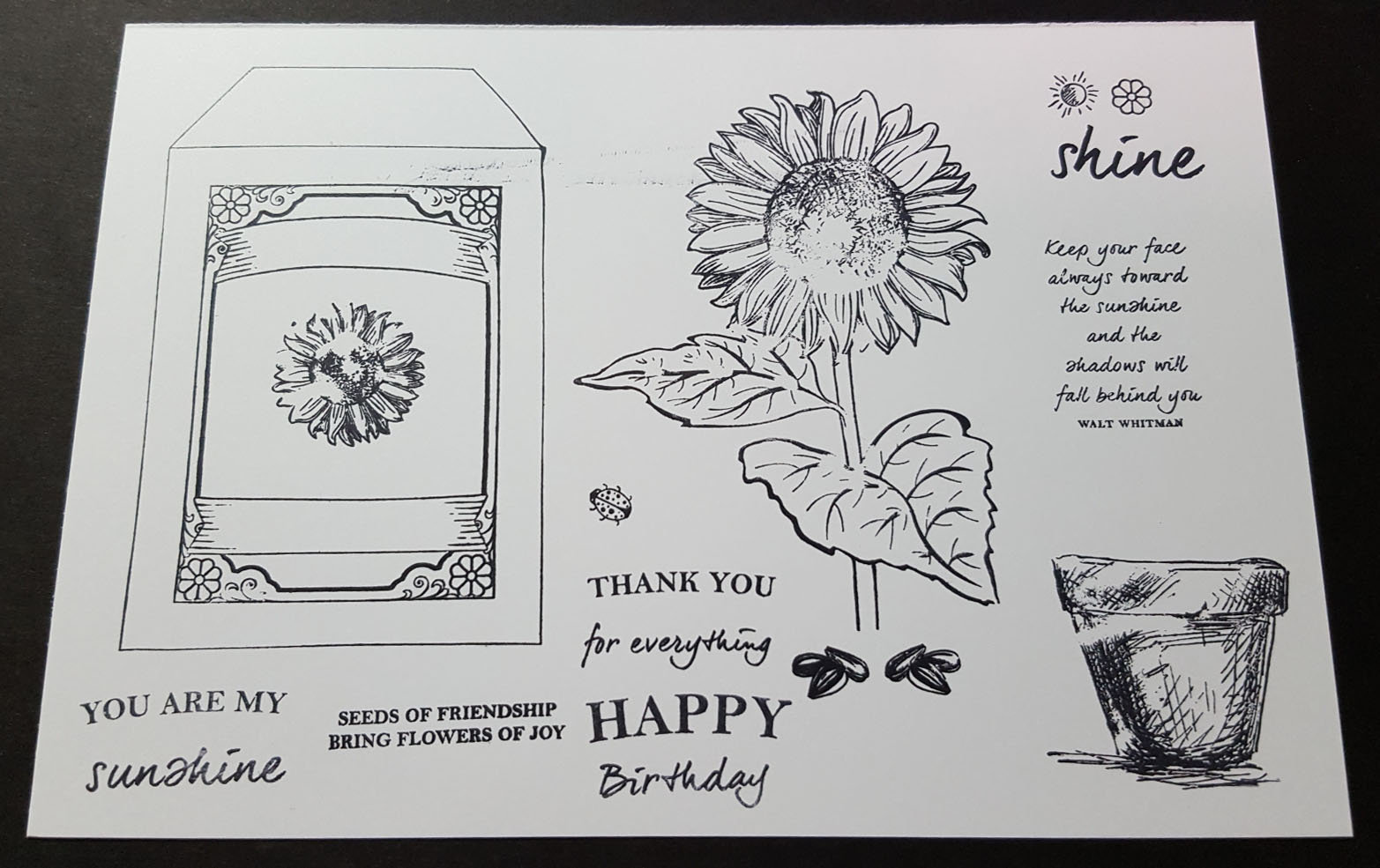Sunflower Dreams Stamped