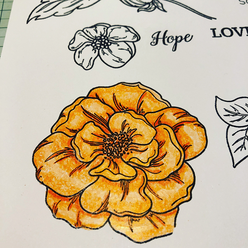 Living Creatively with Fibro | the largest of the beautiful blooms images coloured in shades of orange