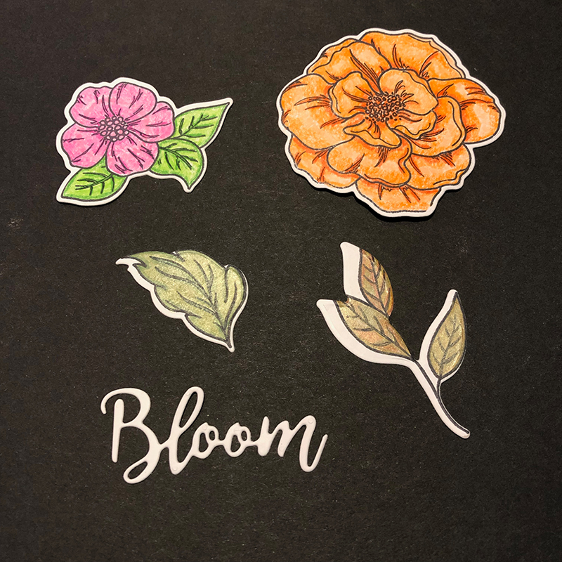 Living Creatively with Fibro | The die cut beautiful blooms images complete with the word bloom which is included