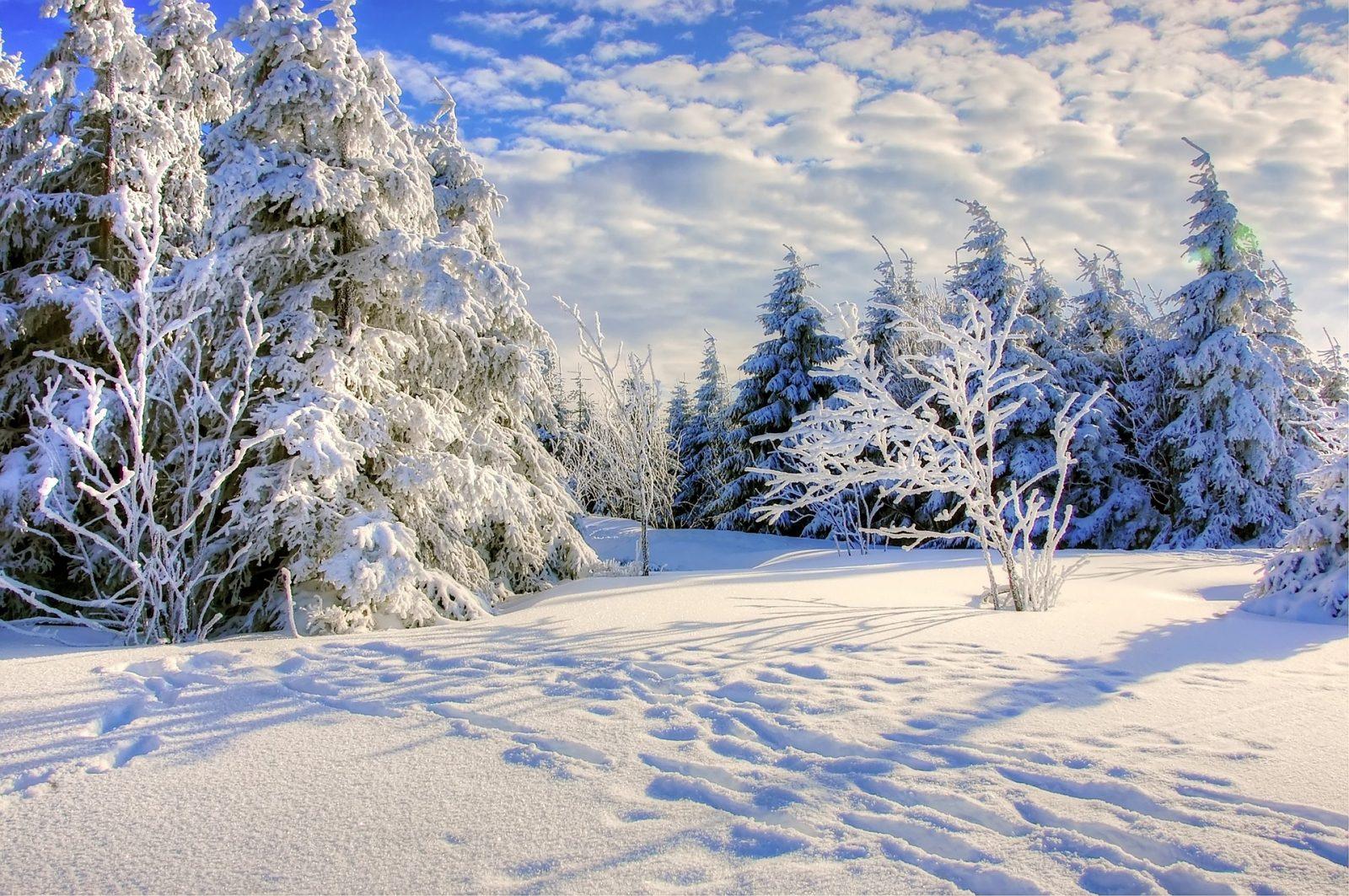 A country scene filled with snow.
