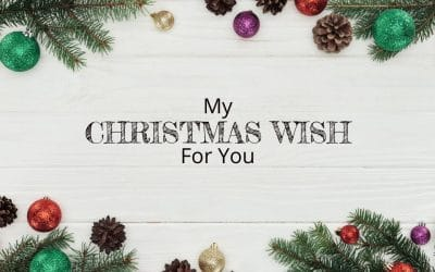 Here is my Christmas Wish for you